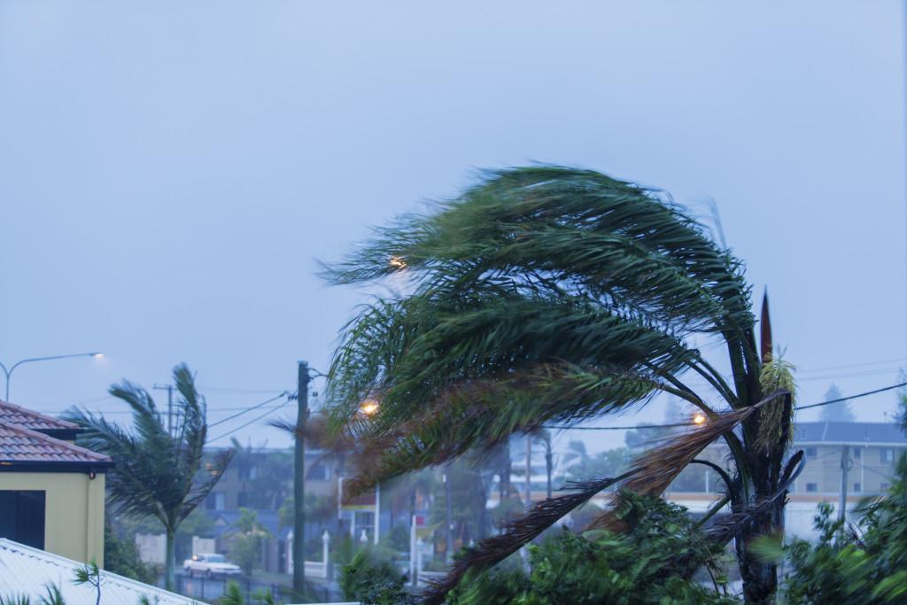 Aventura Hurricane Matthew