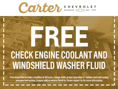 Engine Coolant & Washer Fluid Special