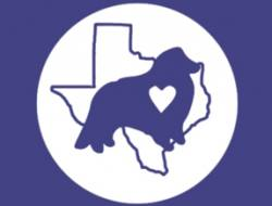 Austin Sheltie Rescue
