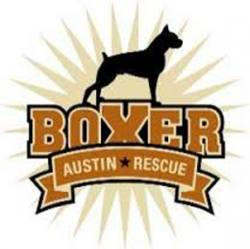 Austin Boxer