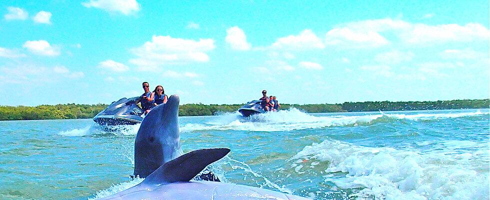 Jet Ski tour Dolphins