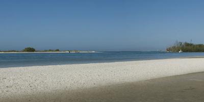 Dog Beach Park