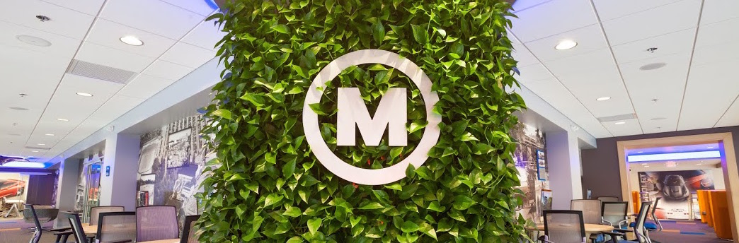 McCluskey Chevy Logo on a plant wall in the showroom